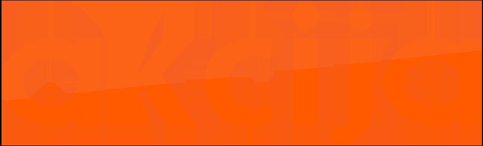 Akcija Logo